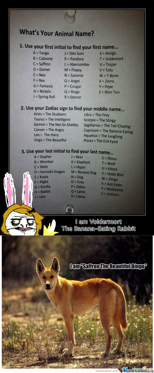[RMX] Voldemort The Banana-Eating Rabbit