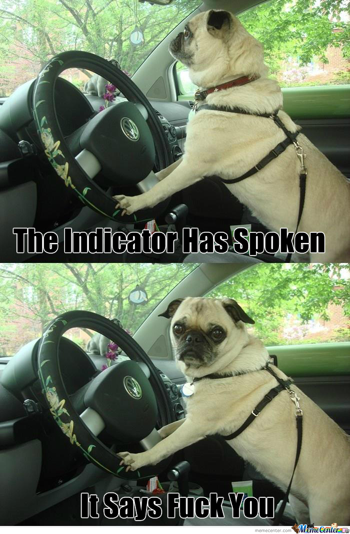 [RMX] What's Up? Never Seen A Pug Driver?