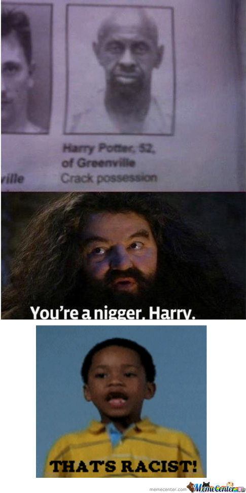 [RMX] You're A Nigger Harry