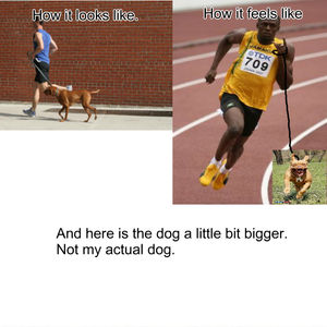 running with my dog_fb_706536 running with my dog by davepipo meme center