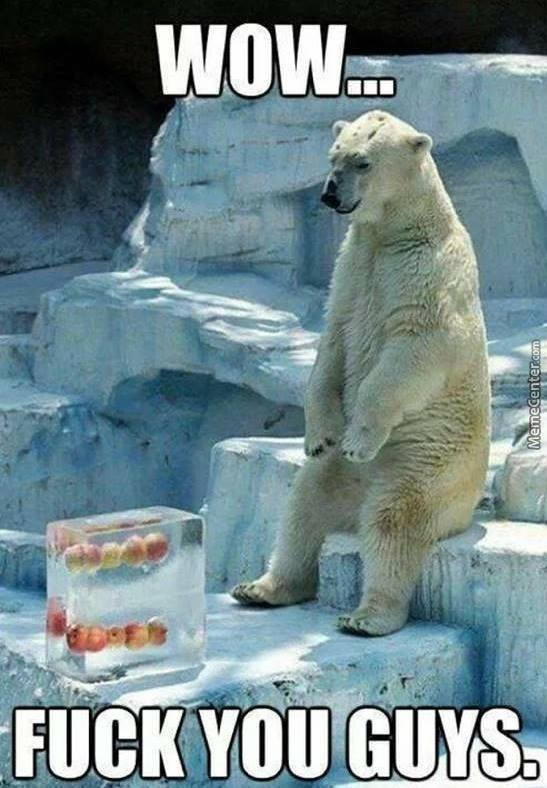 Sad Polar Bear Is Sad