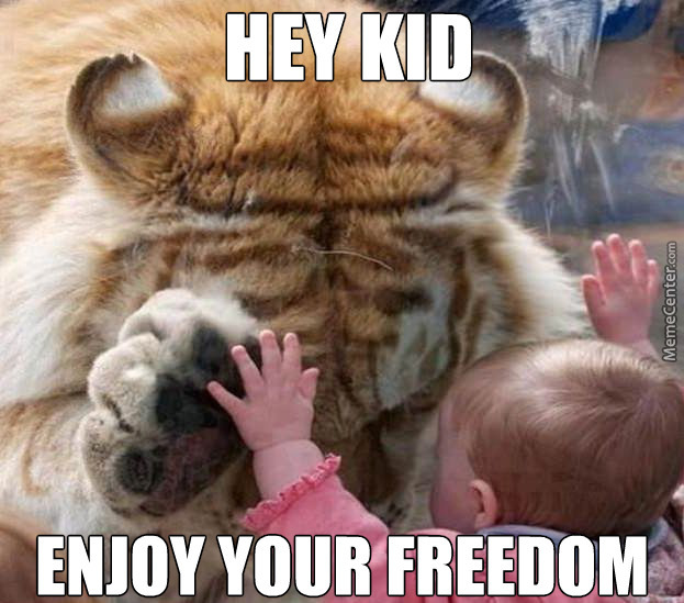 sad tiger_o_2862989 tiger memes best collection of funny tiger pictures