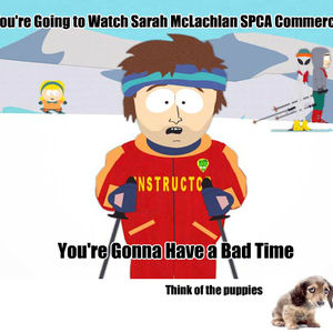 sarah mclachlan in spca by recyclebin meme center
