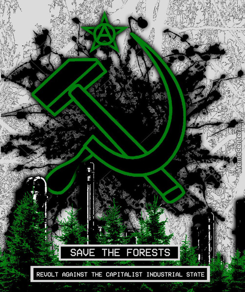 Save The Forests