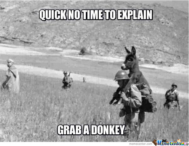 Saving Private Donkey