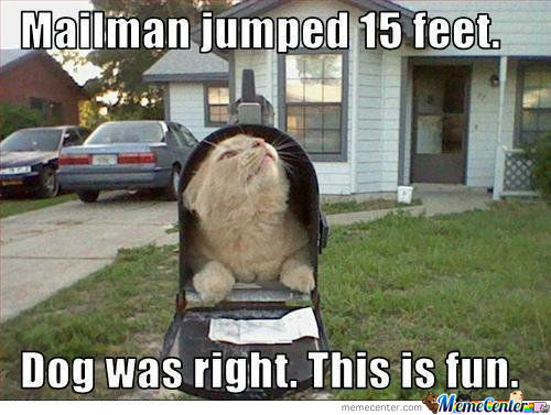 Scaring The Mailman