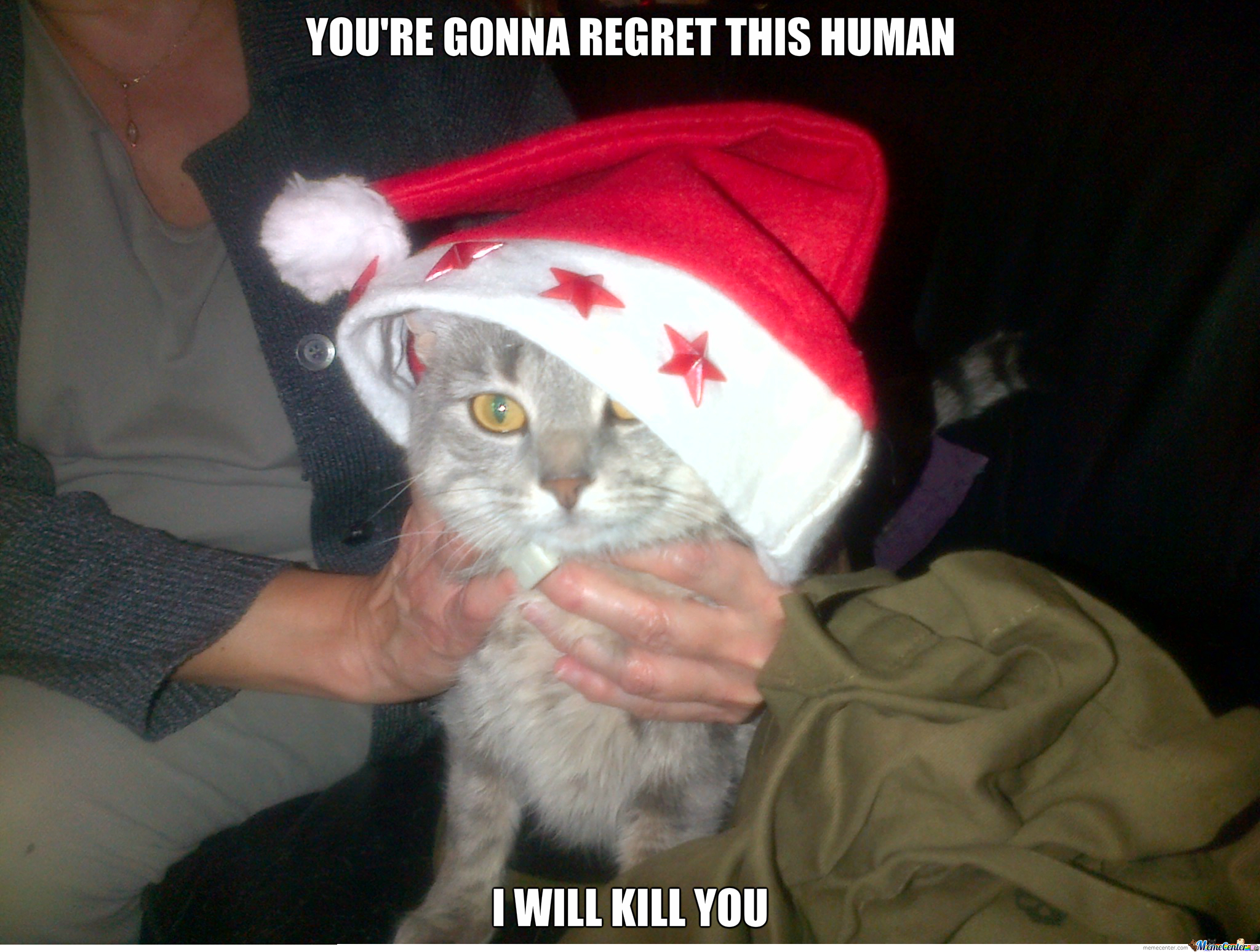 Christmas Memes Cats.Scary Cat Christmas By Hollowarx Meme Center