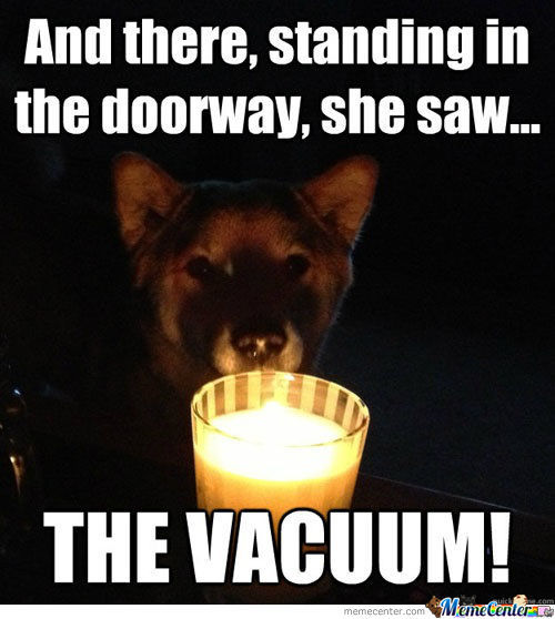 Scary Dog Memes. Best Collection Of Funny Scary Dog Pictures