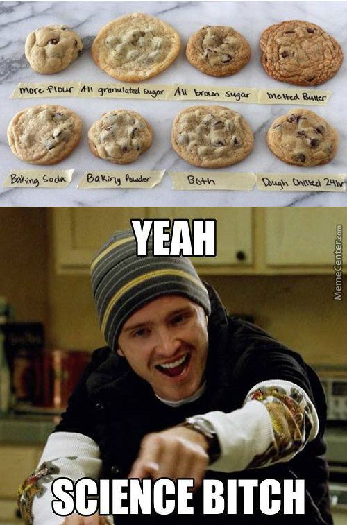 Science Behind Cookies? Madness!