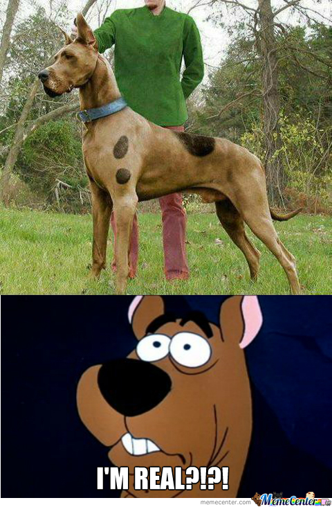 Scooby Doo Is Real?