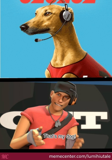 Scout's Dog