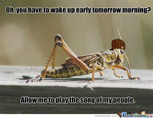 Scumbag Cricket
