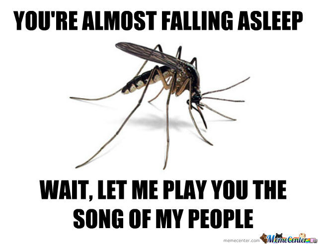 scumbag mosquito_o_494765 scumbag mosquito by nightbreed meme center
