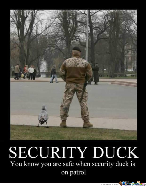 Security Duck