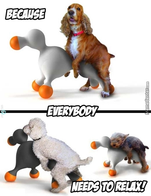 Sex Toy For Dogs