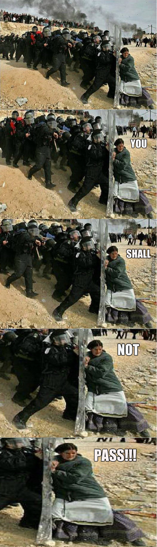She's Gandalfing The Holy Shit Out Of Two Dozen Riot Cops
