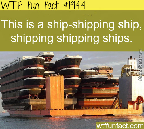 Ship Ship Shippity Shipping Shippy Ship