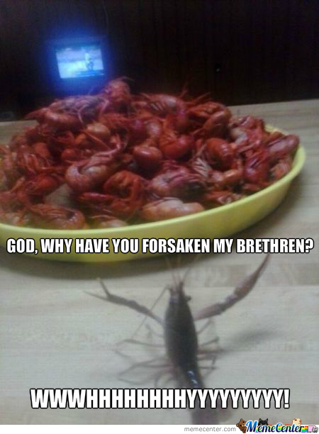 Shrimp Guilt