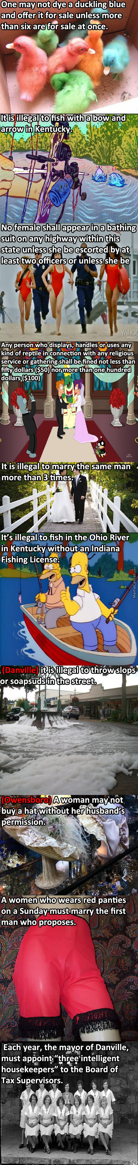 Silly Laws Kentucky
