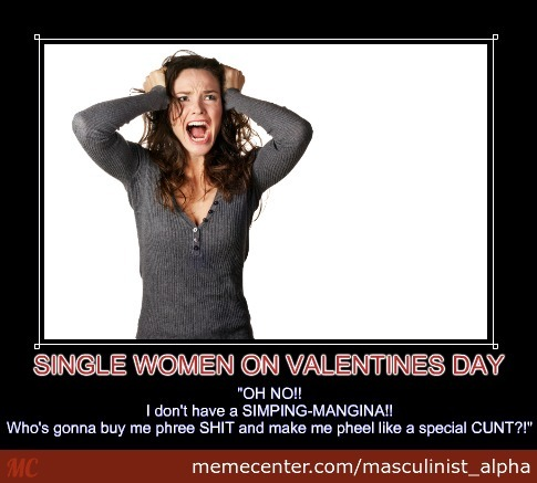 Single Women On Valentines Day By Masculinist Alpha Meme Center