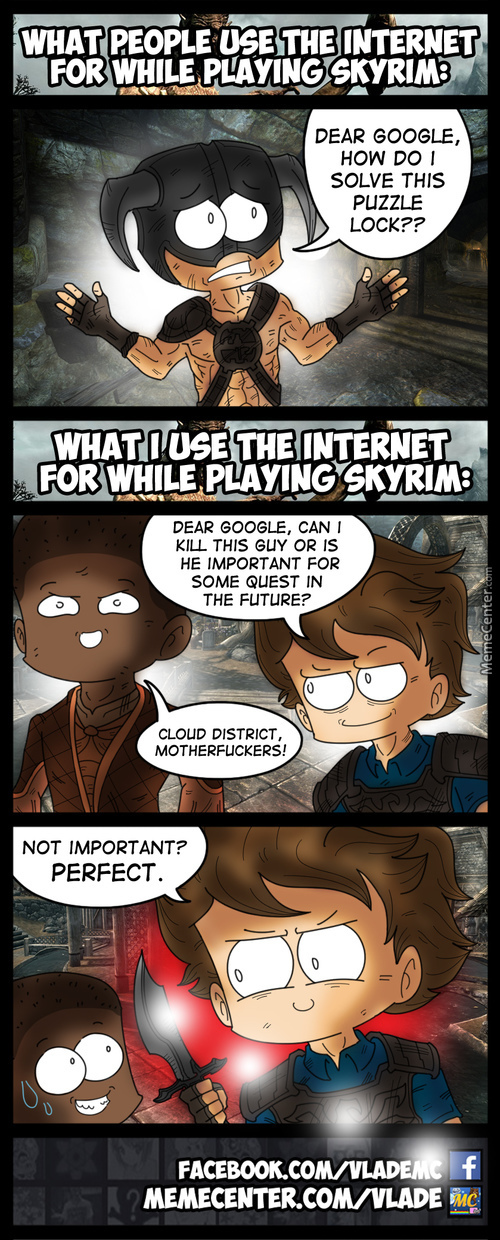 Skyrim Internet Search
