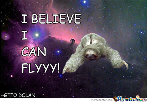 Sloth Believes He Can Fly!