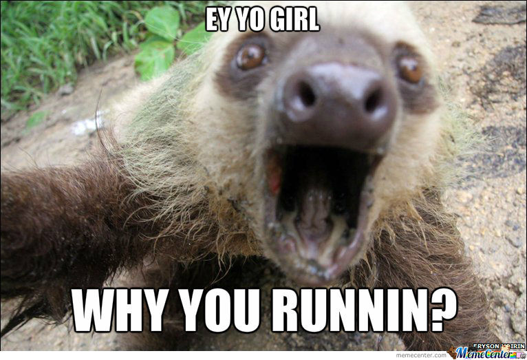sloth_o_990065 sloth by awkwardwalrus meme center
