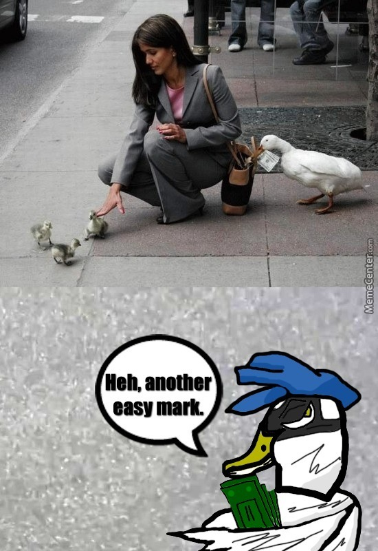 Sly Duck