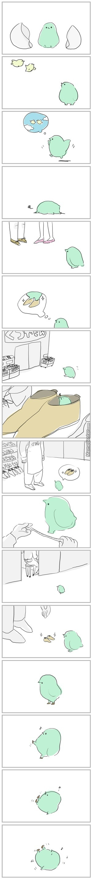 Small Bird Buys Small Shoes