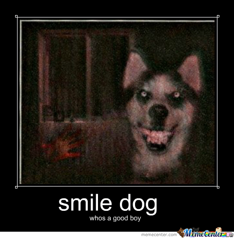 smile dog_o_1755213 smile dog by theperson meme center,Smiling Dog Meme