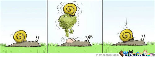 Snails Fart Too!