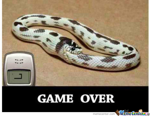 Snakes In 3D