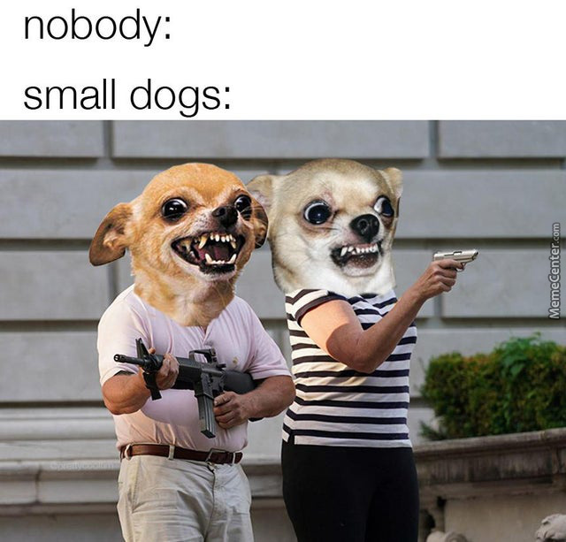 So Small, So Angry
