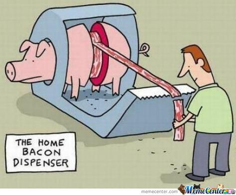 So That Is How They Get Bacon!