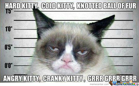 Soft Kitty Sang By Grumpy Cat