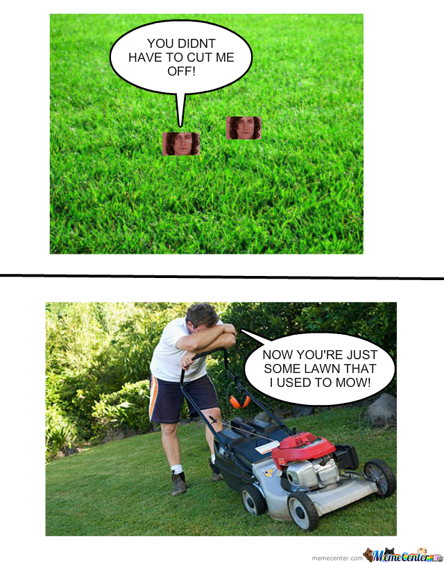 some lawn that i used to mow_o_396152 some lawn that i used to mow by bobthememer meme center,Lawn Memes