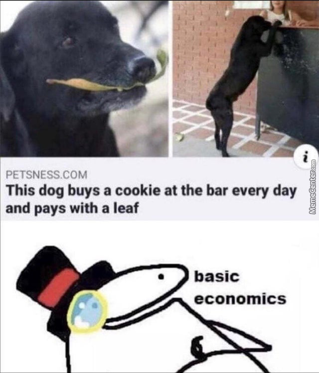Somebody Get That Dog Some Cookie