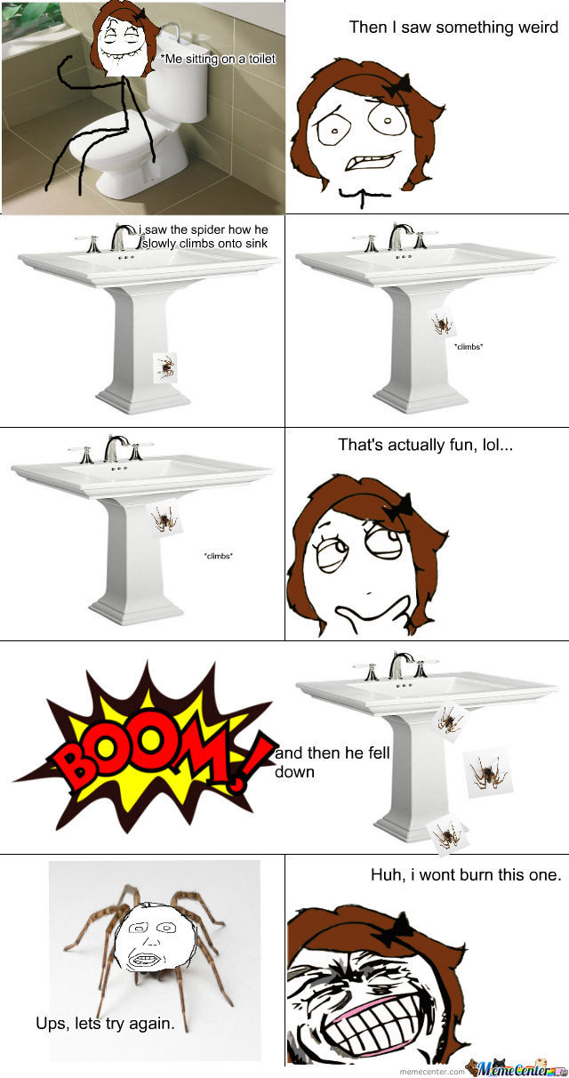 Sometimes Spiders Are Fun