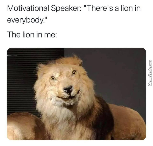 Special Lions