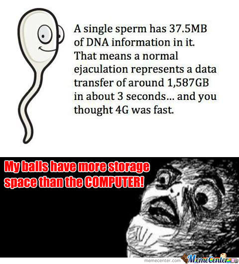 Sperm Vs Computer Storage