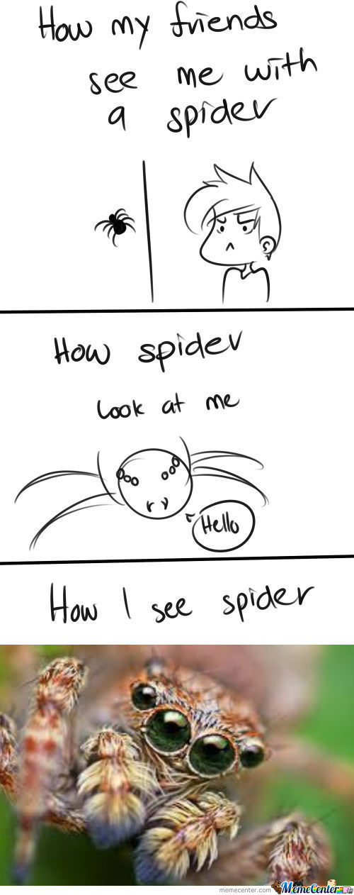 Spider Is Scary (To Me)