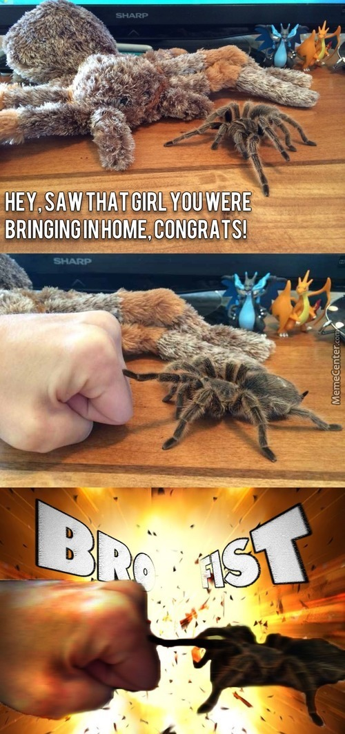Spiderbros Before Hoes