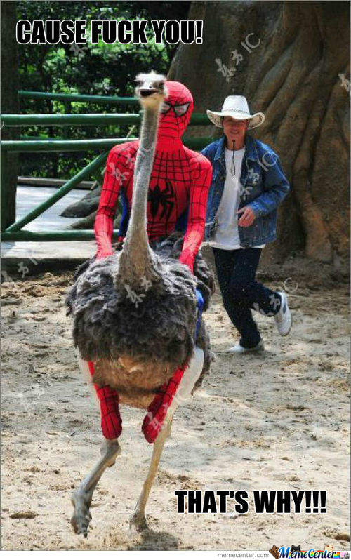 Ostrich Memes. Best Collection of Funny Ostrich Pictures