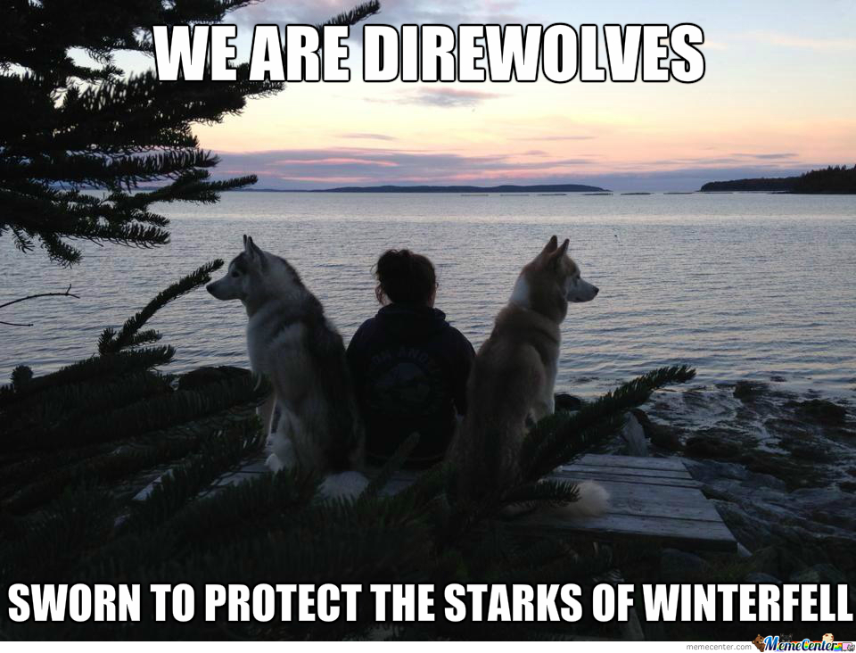 we are direwolves