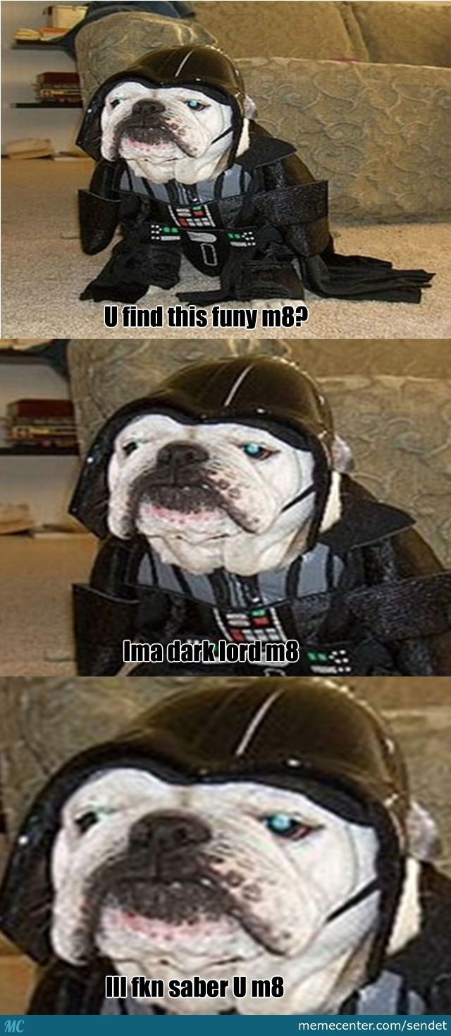 Star Wars Dogg
