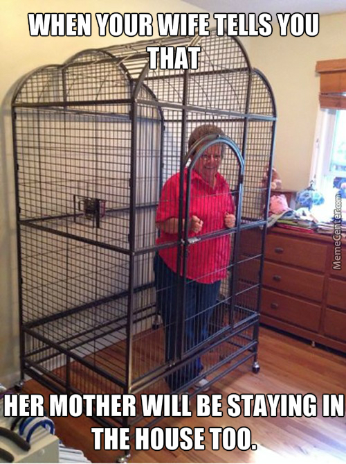 Funny Birthday Meme For Mother In Law : Mother in law memes best collection of funny