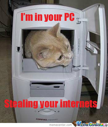 Stealing Your Internets