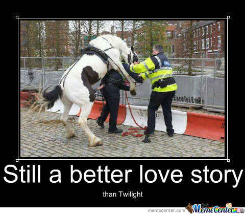 Image result for still a better love story than twilight