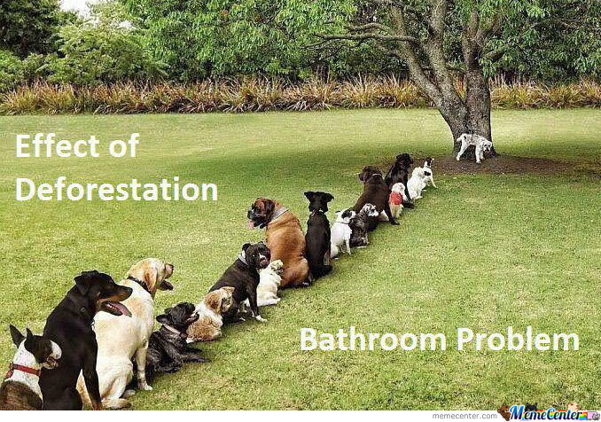 Stop Deforestation Or Get Ready For The Pee Storm !!!