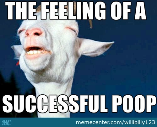 Successful Poop